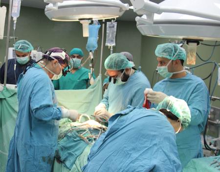 Трансплантация почки в Израиле. Операции по пересадке почки. Отзывы и цены