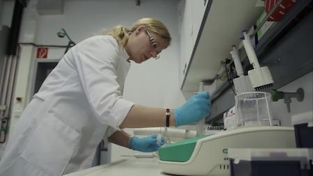 Аутологичные вакцины на дендритных клетках от рака