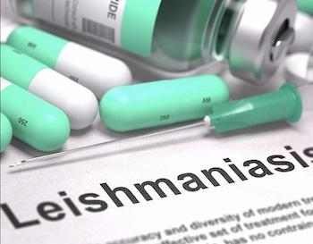 Лечение лейшманиоза в Израиле. Отзывы и цены