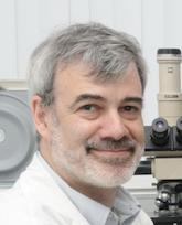 Проф Эли Шпрехер, дерматолог